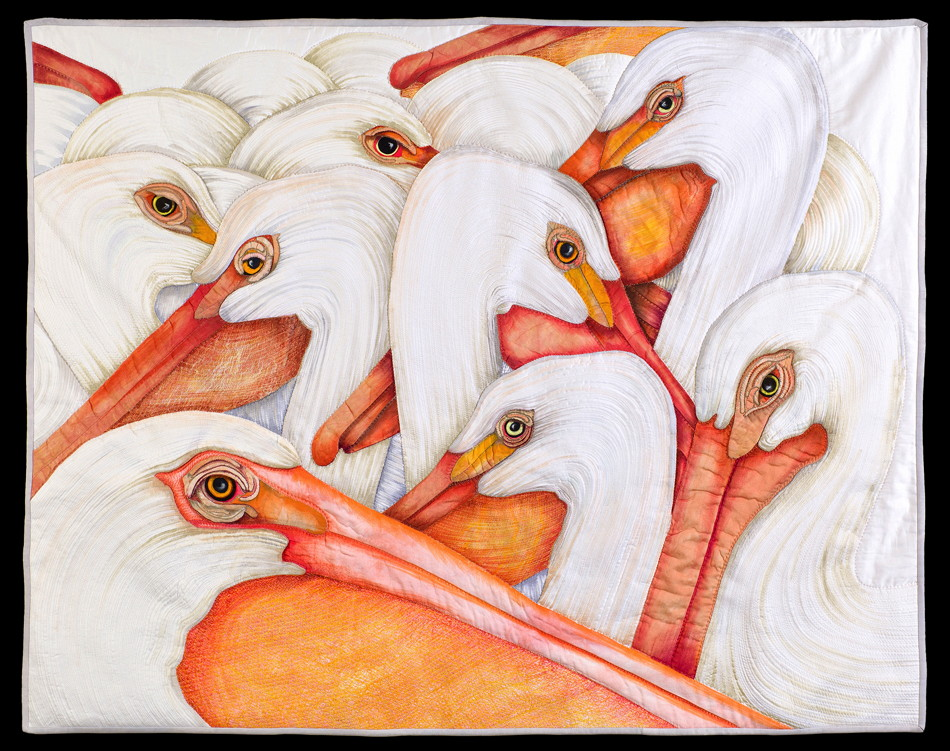 American White Pelicans by Velda Newman